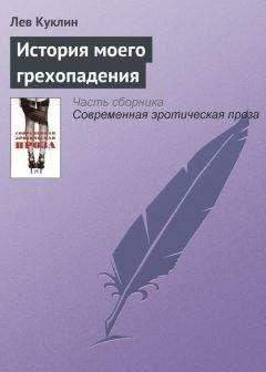 Лев Куклин - История моего грехопадения