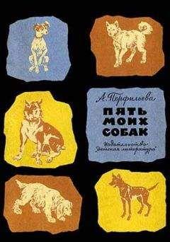 Анастасия Перфильева - Пять моих собак
